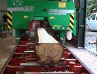 चंडीगढ़ में लकड़ी उद्योग पर लटकेंगे ताले