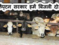 क्योंकि गाय वोट नहीं डालती तो उन्हें फ्री में बिजली न बाबा न