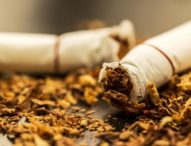 Kids are tobacco addict courtesy Parents