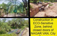 Now, law flouted behind closed doors at Nagar Van