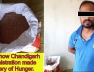 Wheat Grains in name of Ration in Chandigarh, a mockery of Hunger